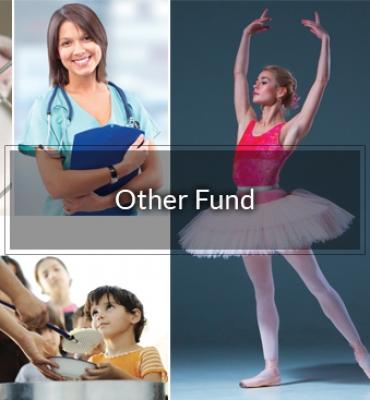 Luzerne Foundation's General Fund
