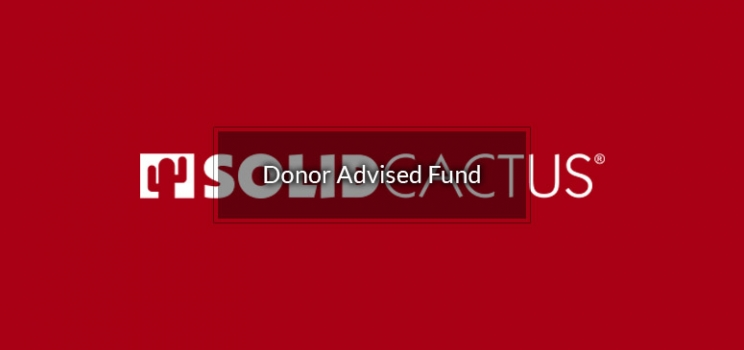 Solid Cactus Cares Fund
